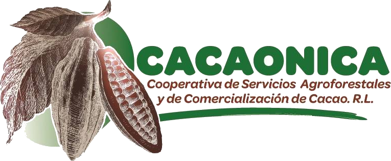 cacaonica